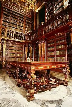 The Library of Combria University Portugal.