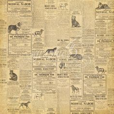 Graphic 45 - Raining Cats and Dogs Collection - Double Sided Paper - Cats Meow Old Advertisements, Retro Advertising, Retro Ads, Vintage Ads, Vintage Stores, Retro Food, Vintage Food, Vintage Prints, Graphic 45