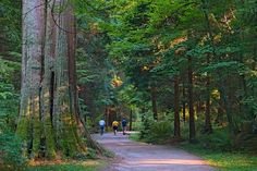 A walk in the Park by John Archer on 500px