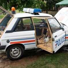 Busted chickens in a reconstructed police car, turned into a fully functional chicken coop, by French artist Benedetto Bufalino via designboom Police Car Videos, Old Police Cars, Old Cars, Chicken Coop Decor, Chicken Cages, Building A Chicken Coop, Chicken Shop, Chicken Garden, Chicken Ideas