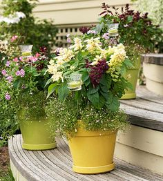 Simplify Your Plantings - Enjoy your outdoor retreat to the fullest, and spend less time on chores such as watering and weeding. Put low-maintenance plants in containers feet tall so they can be moved easily, and they'll create instant privacy. Outdoor Retreat, Outdoor Rooms, Outdoor Gardens, Outdoor Living, Container Plants, Container Gardening, Succulent Containers, Container Flowers, Vegetable Gardening
