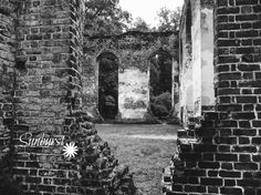 Old Sheldon Church Ruins; Beaufort County, SC. The original church was built in the 1760's and burned during the Revolutionary War. It was rebuilt, but burned again by Sherman's troops as they marched towards Savannah during the Civil War. From my Facing South Collection by Sunburst Photography. Available on Etsy.