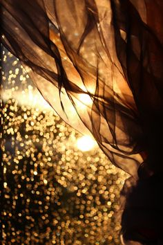 Sparkle & Glow by Miriam Dalley on 500px