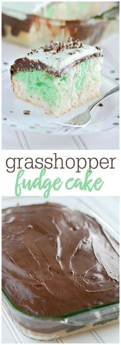 Grasshopper Fudge Ca