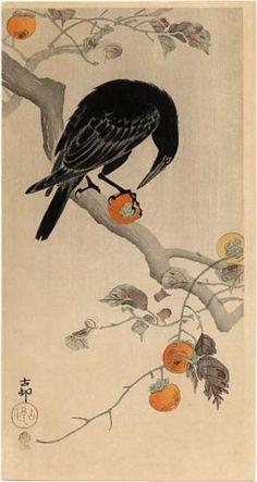 Crow eating a Persimmon - Ohara Koson  1910