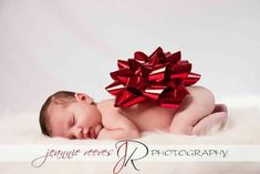 What a great idea for a Christmas baby newborn photo. Newborn Christmas Pictures, Newborn Pictures, Baby Pictures, Newborn Pics, Newborn Baby Photography, Newborn Photographer, Girl Photography, Photography Props, Foto 3d