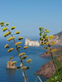 Sardinian Landscape | Italy- by Stefano Ruggeri