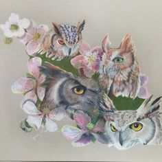 Hedge Row Owls an ORIGINAL drawing in Prisma color pencil all artworks are for sale.