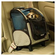 Travel Pet Carrier with Wheels.