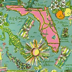 Florida: land of the Lilly! ;) xoxo