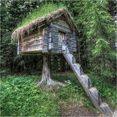 A Nordic food storage hut!   (stabbur)