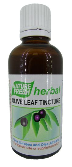 NATURE FRESH OLIVE LEAF TINCTURE 50ML
