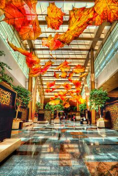 Autumn Leaves in The Lobby of Aria Casino and Hotel, Las Vegas