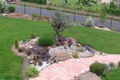 décoration jardin avec olivier | jardin | Pinterest | Gardens ...
