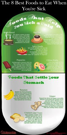 8 Healing Foods When You Are Sick Infographic