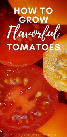 Follow these tips, and you'll grow the most flavorful tomatoes! #gardeningtips #tomatoes #growingtomatoes
