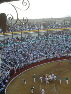Bull Fight - El Puerto de Santa Maria - overwhelming and frightening experience