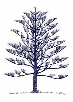"Saatchi Art Artist Jessica b Watson; Printmaking, ""Norfolk pine"" #art"