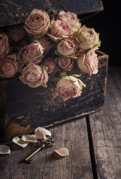 Rose Print featuring the photograph Memory Box by Amy Weiss