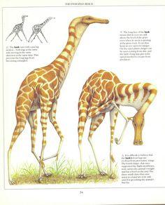 The New Dinosaurs - Dougal Dixon Alien Creatures, Prehistoric Creatures, Mythological Creatures, Fantasy Creatures, Mythical Creatures, Alien Concept Art, Creature Concept Art, Creature Design, Monster Hunter