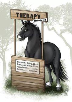 Horse therapy, horse humor, Hahaha!!