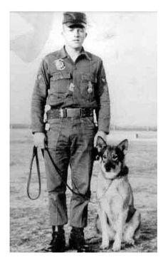Vintage - dogs of war, Military Working Dogs (MWD)