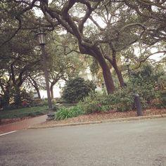 Life is Like a Box of Chocolates while passing through Savannah, Ga