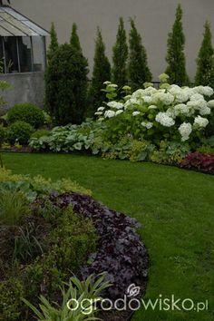 Ogród mały, ale pojemny;) - strona 58 - Forum ogrodnicze - Ogrodowisko