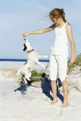 Suncare for Fido? You Bet: Homo sapiens aren't the only species susceptible to the sun's damaging rays. Sun exposure poses serious risks for man's best friend, too. To safeguard your dog, follow our tips.
