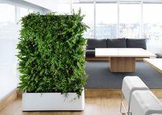 Indoor 12 Pocket Vertical Living Wall Planter – www.delectablegardenshop.com