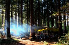 Make Camp building a Star Gazey seat  Architect Tabitha Pope...