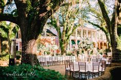 Brooke and Drew - Woodlands Fields Photography Wedding Reception Centerpieces, Wedding Decorations, Wedding Ideas, Amelia Wedding, Dream Wedding, Fall Wedding Flowers, Fall Flowers, Courtyard Wedding, Georgia Wedding Venues