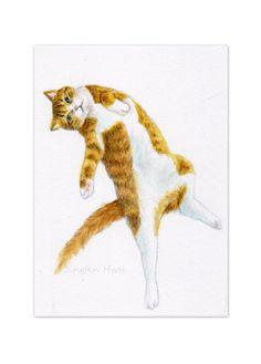 5x7 print art  cat 4x6  A Cat Lying On His Back by JingfenHwu, $8.00