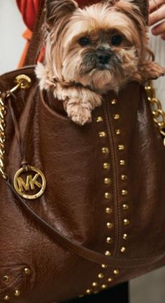 Michael Kors,@WholesaleReplicaDesignerBags.com designer handbags outlet, #CheapMichaelKorsHandbags com michael kors factory outlet,