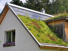 Grass roof and skylight. Also: a cute windowbox upper story window. Strohhaus Wegmann-Gasser - Straw bail house with green roof in Switzerland by Atelier Werner Schmidt