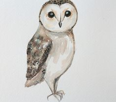 There are approximately 200 species of owls , learn how to paint a simple barn owl with watercolor.