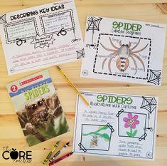 Spiders Interactive