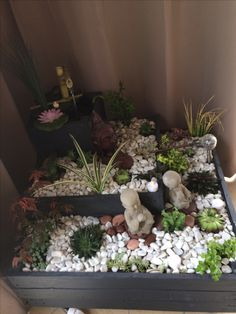 1/12 Dollhouse Minitures Clay Plant Sukkulente mit Keramik Topf Garten Accs Puppenstuben & -häuser