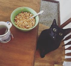 Kitty & Breakfast = two fave things!