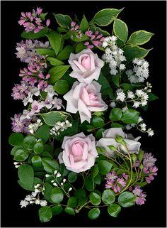 La Vie En Rose (Pinks) 2 – Scanner Photography By Ellen Hoverkamp - New Site All Flowers, Amazing Flowers, Beautiful Flowers, Best Roses, Organic Art, Fauna, Pictures To Paint, Flower Photos, Flower Petals