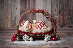 Newborn in Twig Bed - Christmas Photo Session - Christmas Newborn Session - Christmas Photos - Christmas Newborn - Holiday Portraits - Newborn Photography - Newborn Photographer - Holiday Newborn Session - Christmas Card Photos.