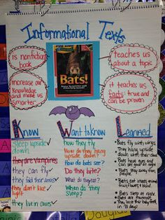 Teaching informational text in kindergarten (anchor chart)