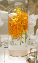 yellow orchid centerpiece - Google Search