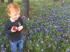 Notes in the Key of Life: Enjoying Bluebonnets and More!