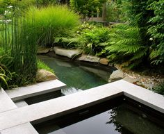 horsetail grass landscape asian with water feature