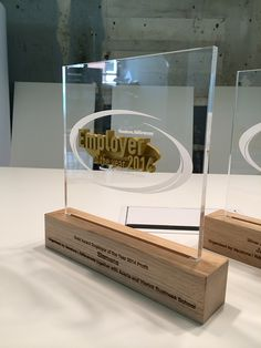 3D printed trophy - custom made awards - design awards