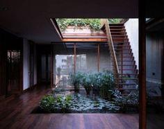 Không gian sống thư giãn với vườn cây trong nhà 4 Indoor Courtyard, Internal Courtyard, Indoor Garden, Indoor Pond, Indoor Outdoor, Outdoor Ideas, Courtyard Gardens, Zen Gardens, Rooftop Terrace