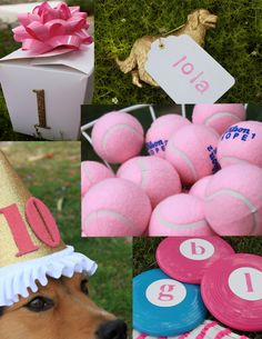 http://www.sittinginatreeevents.com/blog/tag/dog-party Love the idea of tennis balls and frisbees as party favors!