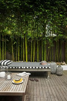 Garden Screening Ideas - Screening can be both ornamental as well as functional. From a well-placed plant to maintenance free fencing, here are some imaginative garden screening ideas. Back Gardens, Outdoor Gardens, Outdoor Rooms, Outdoor Living, Outdoor Benches, Outdoor Furniture, Garden Screening, Screening Ideas, Bamboo Screening