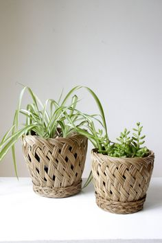 SOLD Two vintage cane baskets/ wicker pot by RetroandRosesvintage
